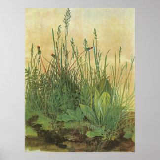 Vintage Kunst, großes Stück Rasen durch Albrecht Poster