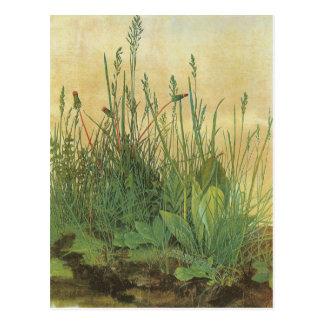 Vintage Kunst, großes Stück Rasen durch Albrecht Postkarte