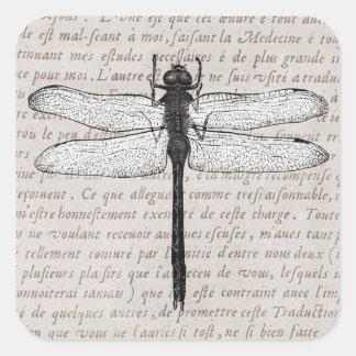 Vintage Libellen-und Antiken-Text-Collage Quadrat-Aufkleber