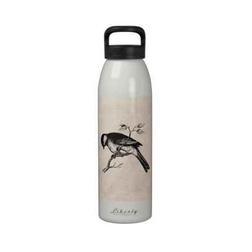 Vintage Lied-Vogel-Illustration - Vögel 1800's Wiederverwendbare Wasserflasche