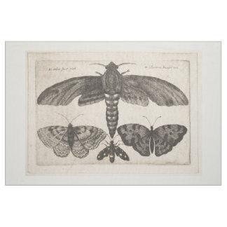 Vintage Mottelepidoptera-Insekten-Tapisserie (63) Stoff