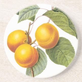 Vintage Nahrungsmittelfrucht, Aprikosen-Pfirsich Untersetzer