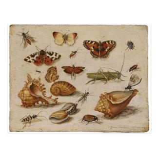 Vintage Natur-Postkarte Postkarte