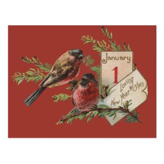 Vintage neue Jahre Vogel- Postkarte
