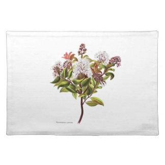 Vintage NZ Blumen - Meterosideros albiflora Tischset