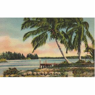 Vintage Palme Retro Fotoskulptur Magnet