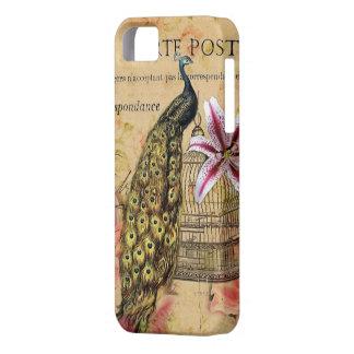 Vintage Paris-Modepfau-Lilie mit Blumengirly iPhone 5 Schutzhülle