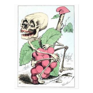 Vintage Postkarte des Skeleton Traubendiebes