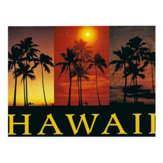 Vintage Postkarte Hawaiis
