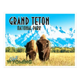 Vintage Reise-Postkarte großartiger Teton Postkarte