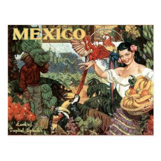 Vintage Reisepostkarte Mexikos Postkarten