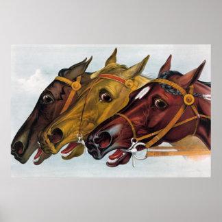 Vintage Rennpferde, Hals zum Hals laufend Poster