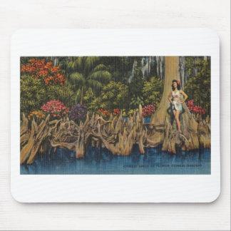 Vintage Retro Gärten Floridas Zypresse Mousepad