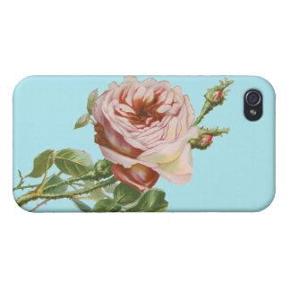 Vintage rosa Rose auf blassem Aqua iPhone 4 Etui