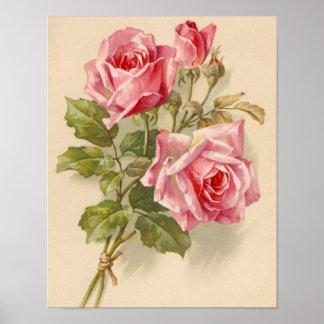 Vintage rosa Rosen Plakat