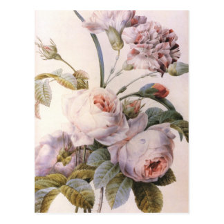 Vintage Rose, Gartennelken-Blumenstrauß Postkarte