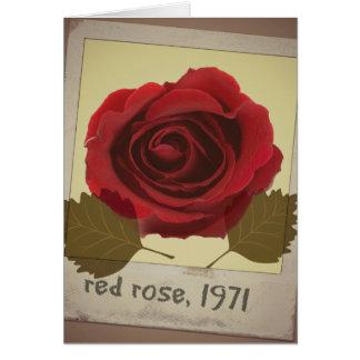 Vintage Rose Grußkarte