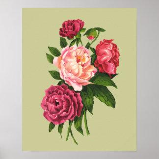 Vintage Rosen-Rosa-Pfingstrosen-Garten-Blume Poster