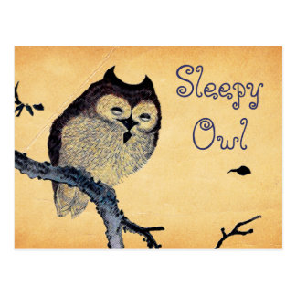 Vintage schläfrige Eule Postkarte