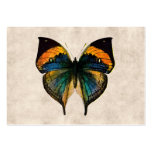 Vintage Schmetterlinge der Mini-Visitenkarten
