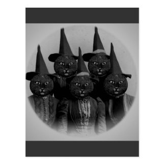 Vintage schwarze Katze/Hexen Postkarte