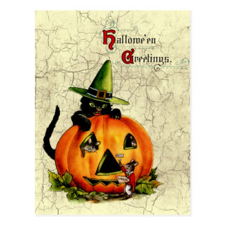 Vintage schwarze Katzen-Postkarte Halloweens Postkarte