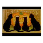 Vintage schwarze Katzen und Jack O'Lantern Hallowe Postkarte