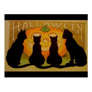 Vintage schwarze Katzen und Jack O'Lantern Postkarte