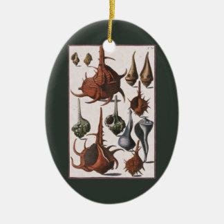 Vintage Seashells, Marineleben, Ozean-Muscheln Keramik Ornament