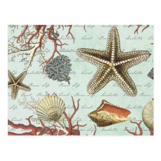 Vintage Seashells… Postkarte