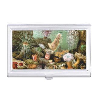 Vintage Seeanemonen. Meeresflora und -fauna-Tiere Visitenkarten Etui