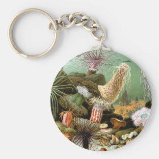 Vintage Seeanemonen-Tiere durch Merculiano Schlüsselanhänger