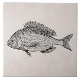 Vintage Seebrachsen-Fisch-Retro Fisch-Schablone Große Quadratische Fliese