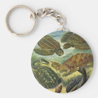 Vintage Seeschildkröte-Land-Schildkröte, Schlüsselanhänger