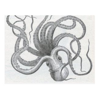 Vintage Seesteampunk Krake kraken Entwurf Postkarten