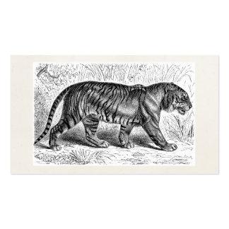 Vintage Tiger-Illustrations-wilde Tiger-Schablone Visitenkarten