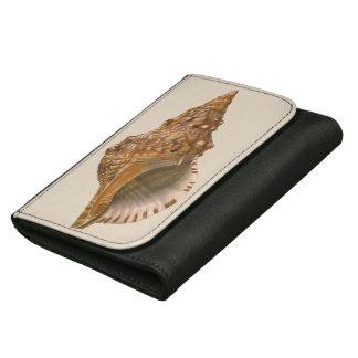 Vintage Tritonseashell-Muschel, Marineozean-Tier