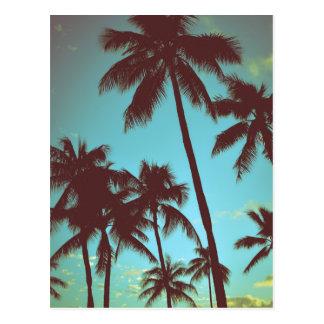 Vintage tropische Palmen Postkarte