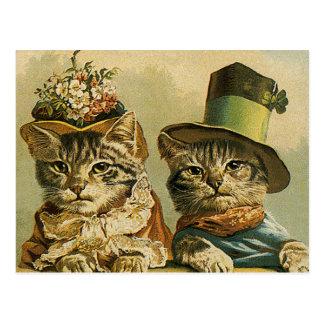 Vintage viktorianische lustige Katzen in den Hüten Postkarten