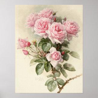 Vintage viktorianische romantische Rosen Poster