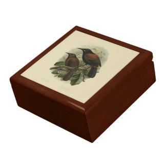 Vintage Vögel der Wissenschafts-NZ - Erinnerungskiste