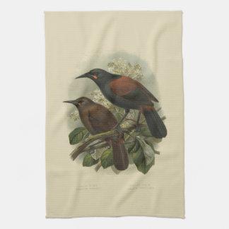 Vintage Vögel der Wissenschafts-NZ - Geschirrtuch