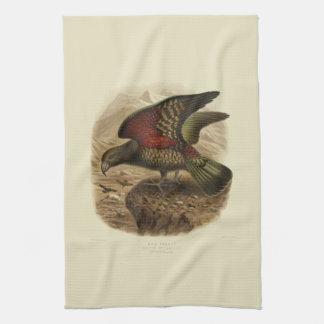 Vintage Vögel der Wissenschafts-NZ - Kea Tee-Tuch Handtuch