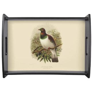 Vintage Vögel der Wissenschafts-NZ - Kereru Tablett