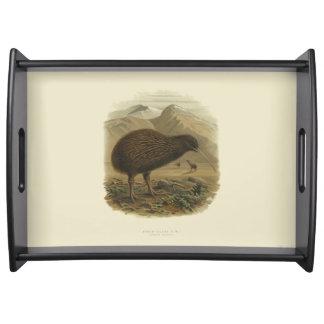 Vintage Vögel der Wissenschafts-NZ - Kiwi Tablett