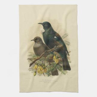 Vintage Vögel der Wissenschafts-NZ - Tui-Tee-Tuch Handtuch