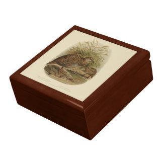 Vintage Vögel der Wissenschafts-NZ - Weka Geschenkbox