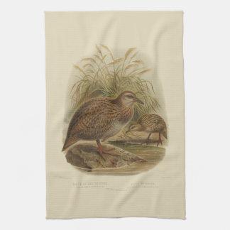 Vintage Vögel der Wissenschafts-NZ - Weka Tee-Tuch Küchentuch