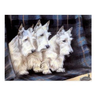 Vintage weiße schottische postkarten