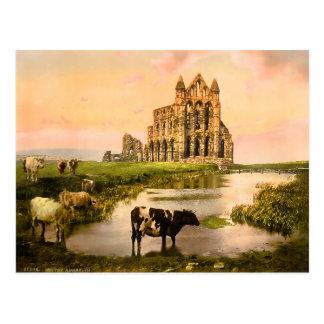 Vintage Whitby Abtei Yorkshire England Postkarte